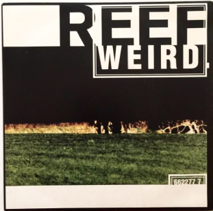 "Reef - Weird (7"") (Orange Vinyl) (EX+/EX-)"